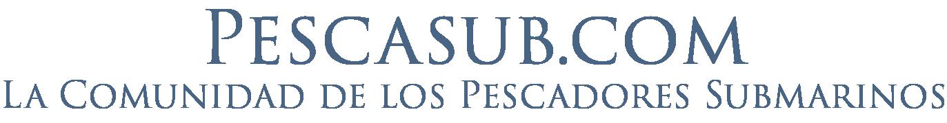 Pescasub.com
